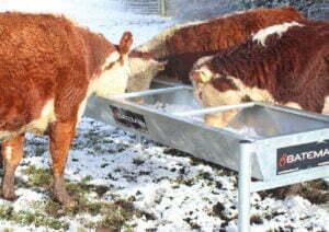 2500mm beef trough