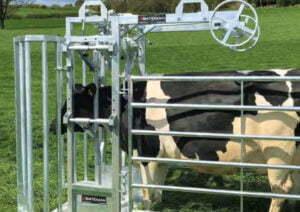 ambassador double yoke gate