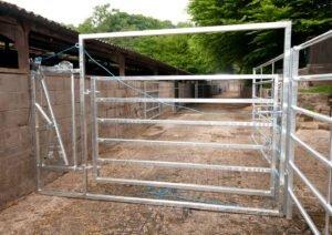 calving hurdle