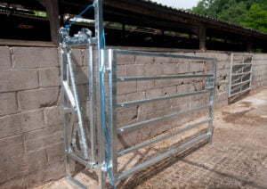 calving hurdle open