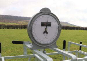 lamb weigher clock