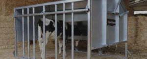 calf equipment banner