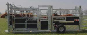 cattle equipment
